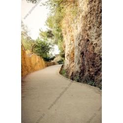 Foto mural caminho