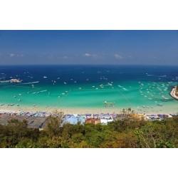 Vinil Coral Island