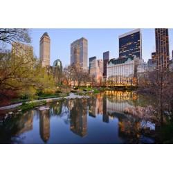 Foto mural Central Park