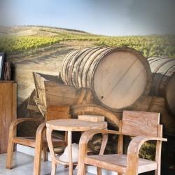 Vinil vinha