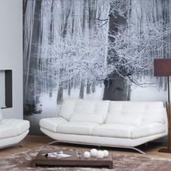 Foto vinil paisagem Invernal