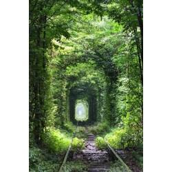 Foto vinil ferrovia