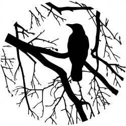 Vinil circulo árvore com pássaro