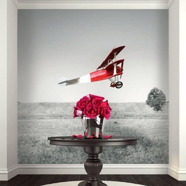 Mural de parede avioneta vermelha