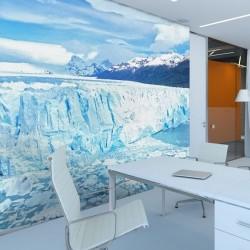 Mural de parede Antártida