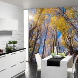 Papel pintado floresta 2