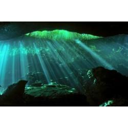 Mural de parede luz sobre água