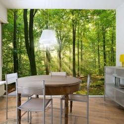Papel pintado floresta 1