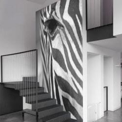Papel pintado cabeça de zebra