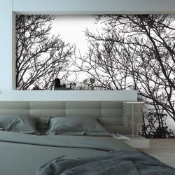 Foto mural nevoeiro na...