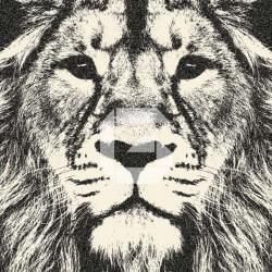 Mural de parede cabeça de leão