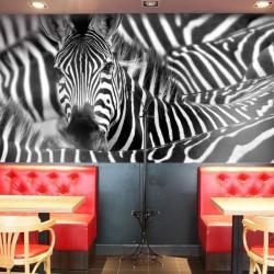 Vinil de parede zebras