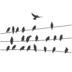 Vinil pássaros nos cabos