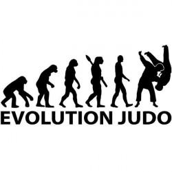 Autocolante evolução Judô