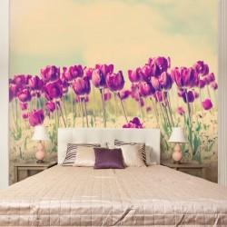 Mural campo de tulipas