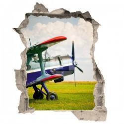 Vinil de ilusão ótica avioneta