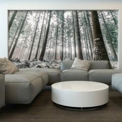Mural de parede pinheiros