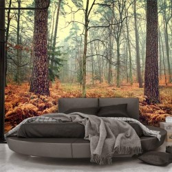 Papel pintado outono na...