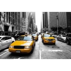 Vinil taxis em New York 1