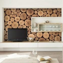 Mural de parede madeiras 2