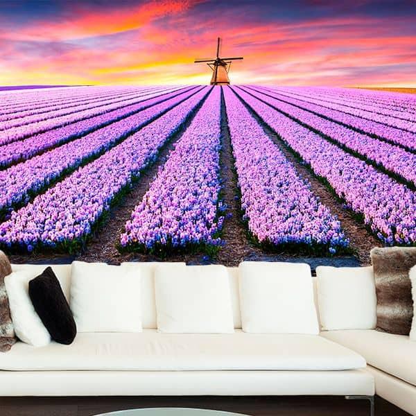 Foto mural campo de flores