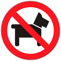 Vinil para empresas proibido cães