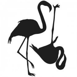 Vinil de aves flamingos