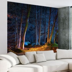 Papel de parede floresta...