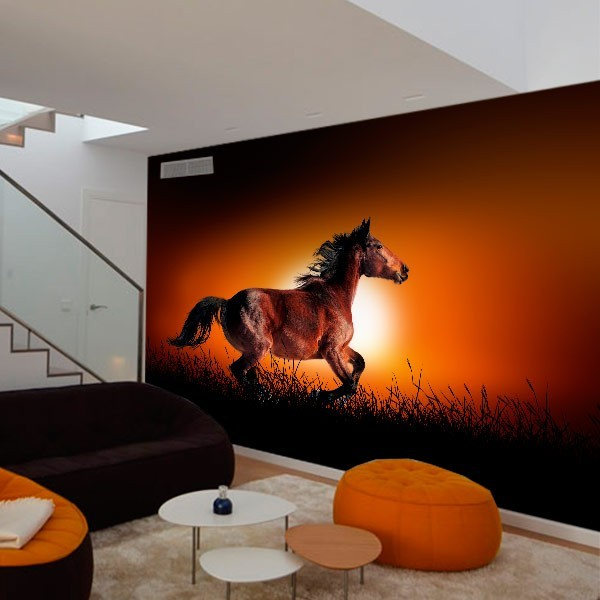 Mural de parede cavalo selvagem
