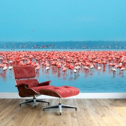 Vinil de parede flamingos