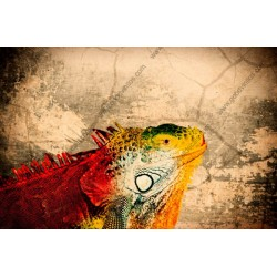 Papel parede camaleão vintage