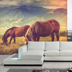 Papel pintado cavalos na...
