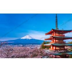 Mural de parede monte Fuji