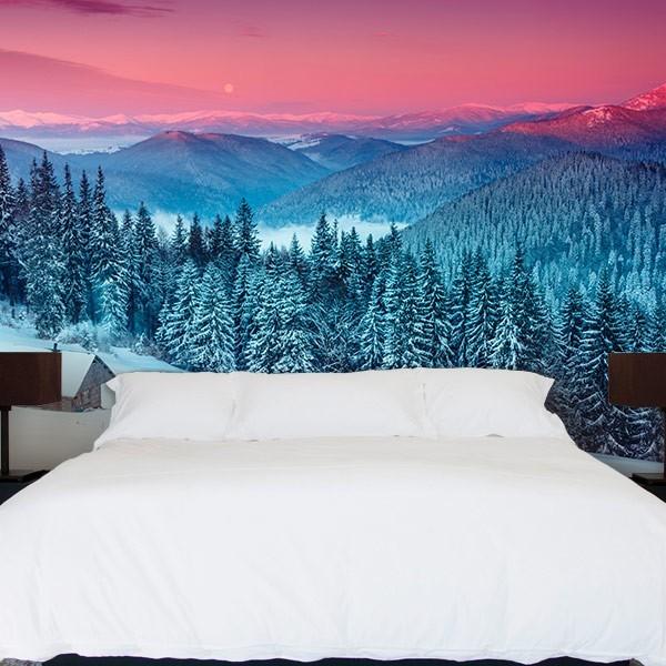 Fotomural neve