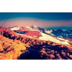 Foto mural montes com neve