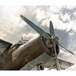 Foto mural avião velho