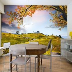 Murais decorativos campo